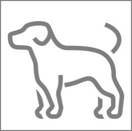 Icon_Team_Hund
